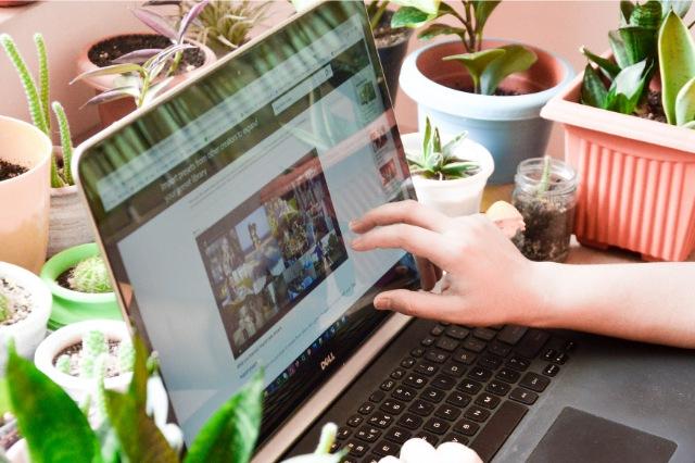 Cursos Gratis Online, Cursos Online Gratuitos para Desempleados, Cursos Sanitarios Gratis Online.